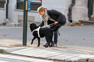 Trening på kanter og kryss i Oslo
